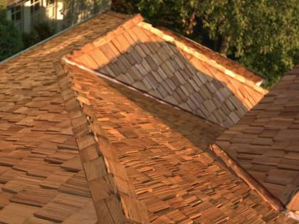 7 Ways Roofs Are Going Green And How You Can Take